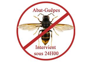 Abat-Guêpes diapo4