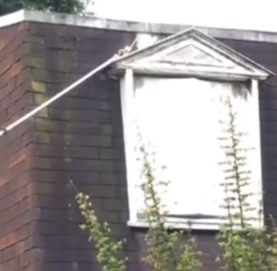 nid d 39 abeilles sous toiture. Black Bedroom Furniture Sets. Home Design Ideas
